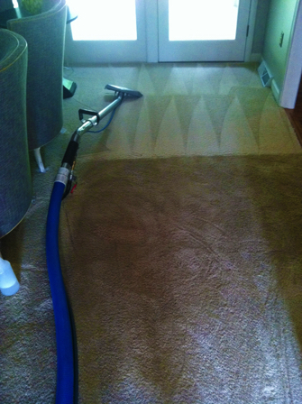 clean-carpets-greenville-sc